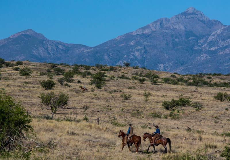 Las Cienegas in Arizona.