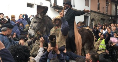 Cruelty v. tradition as festival's use of donkey questioned