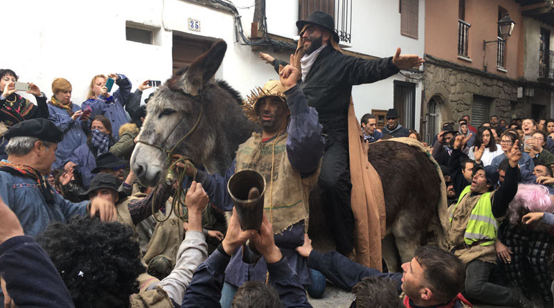 The Donkey Sanctuary is calling for a law change to protect animals from mistreatment at festivals such as Peropalo in the village of Villanueva de la Vera.