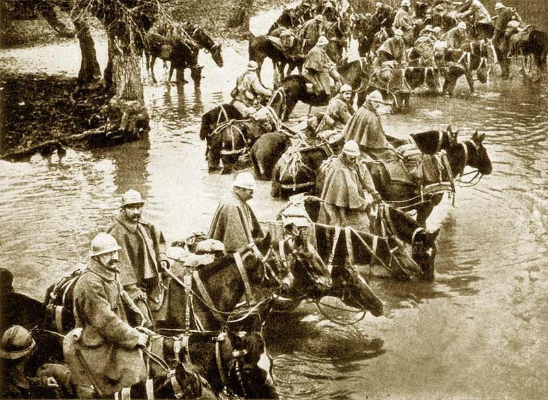 "French reserves and their horses resting in a river on their way to Verdun. ""They shall not pass"" is a phrase which for all time will be associated with the heroic defense of Verdun."