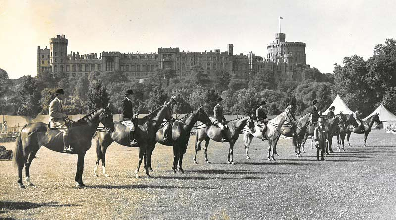 A hunter class lineup at Windsor Show in 1947.