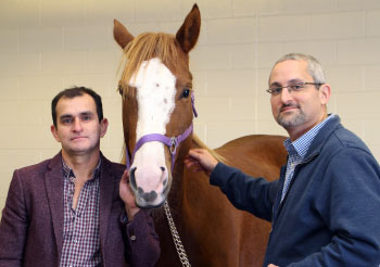 Dr Luis Arroyo, a clinician and researcher in the University of Guelph's Ontario Veterinary College's Department of Clinical Studies, left, with Dr Brandon Lillie, a pathologist in the Department of Pathobiology at OVC.
