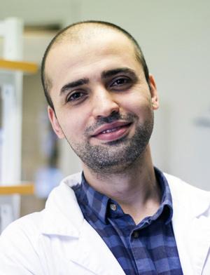 Dr Pashtun Shahim