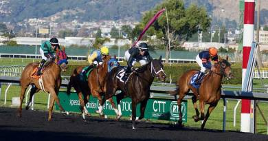 Inherent differences in racehorse breeds a factor in track deaths, findings suggest