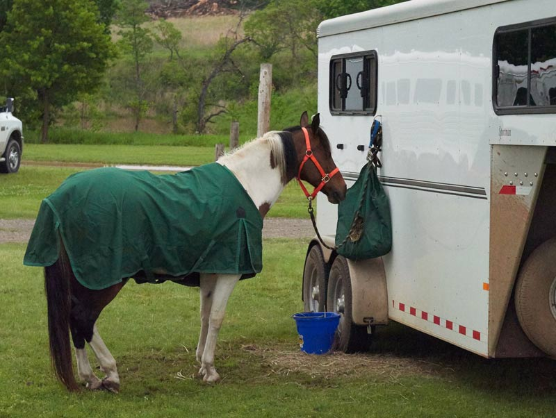 A clutter-free, simple stabling set up. A horse's home away from home where the horse can rest, eat, drink and sleep. Different rules may apply to other countries.