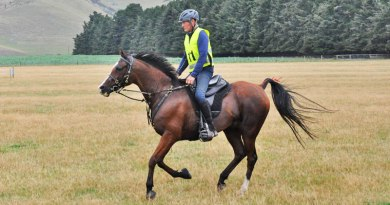 Philip Graham: Endurance rider ready to go the distance