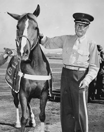 Sergeant Reckless during the Korean war.