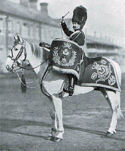 A mounted drummer of the Scots Greys (about 1900). The richly embroidered drum banners and schabraque bear regimental devices and battle honours, including the thistle, the white horse of Hanover, and the French Imperial Eagle.