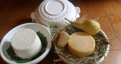 Asinino Reggiano cheese is made from 100% donkey milk.