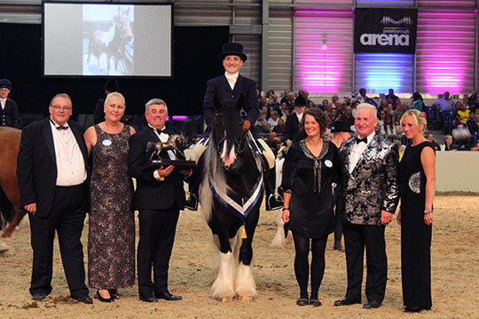 Frodo was named National Rescue Pony Champion at Equifest last weekend.