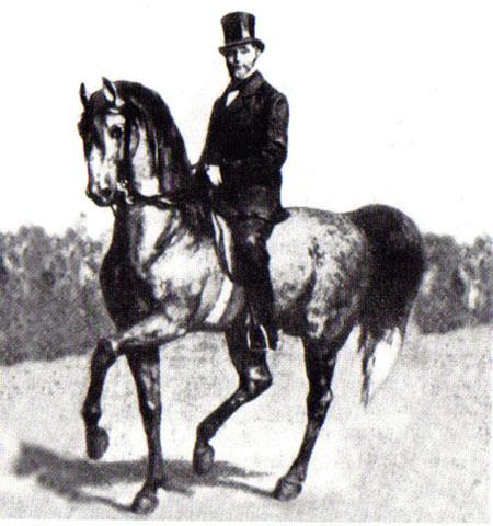 Gustave Steinbrecht