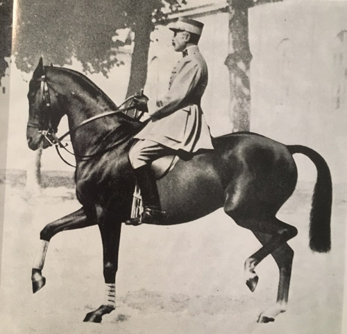 Colonel Decarpentry in passage with his famous thoroughbred Professeur.