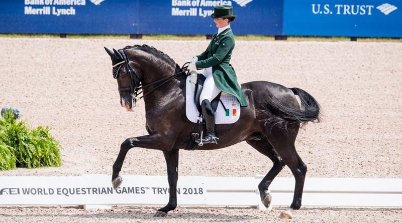 Judy Reynolds and Vancouver K were the first Irish combination in history to reach the final of the Freestyle to Music at a World Equestrian Games. © Erin Gilmore