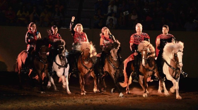 Martin Nielsen grew up with Icelandic horses and they remain his passion. Among other things, he is part of the Knights of Iceland Show Team, which promotes the breed in North America. Here the team is performing in the Kentucky Horse Park. Nielsen is second from right. His wife, Shaila Sigsgaard is second from left. Photo: Ida Sigsgaard