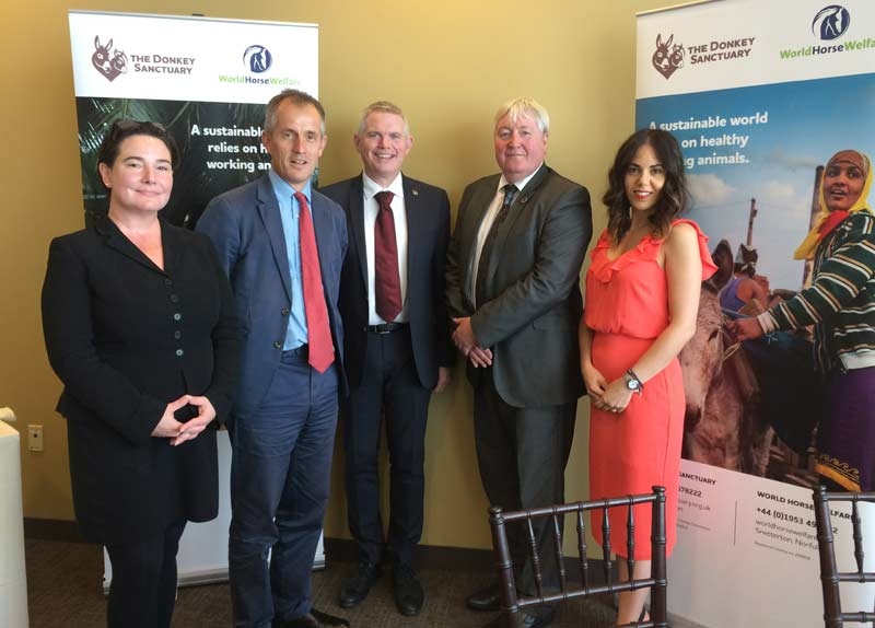 From left, World Horse Welfare communications and public affairs director Jessica Stark and CEO Roly Owers, wih The Donkey Sanctuary's CEO Mike Baker, UN Ambassador Ian Cawsey, and Advocacy Manager Valentina Riva.