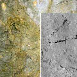 Cave art depicting a horse dates back 12,000 years, say researchers