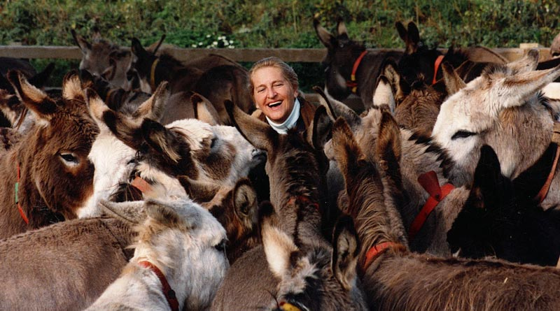 Dr Elisabeth Svendsen would have turned 89 on January 23, and The Donkey Sanctuary's 50th anniversary celebrations will kick off on that day.