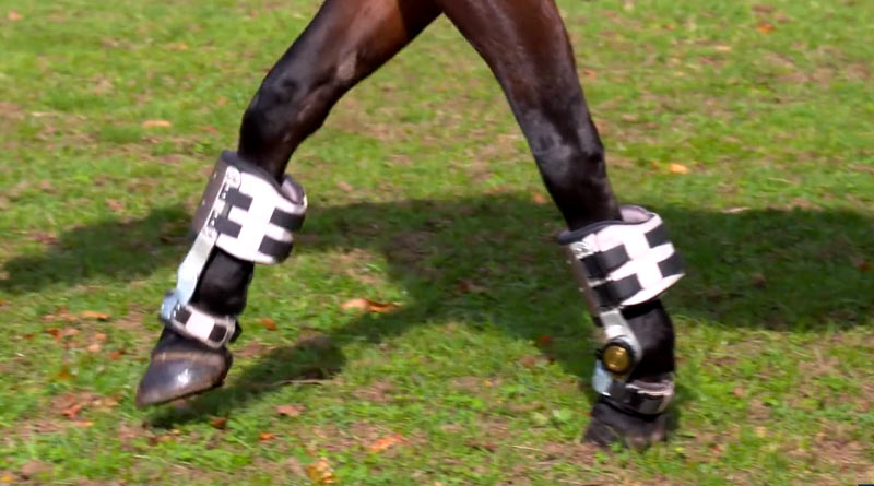 """Horsepower's Fast Track boots have been described as a """"game-changer""""."""