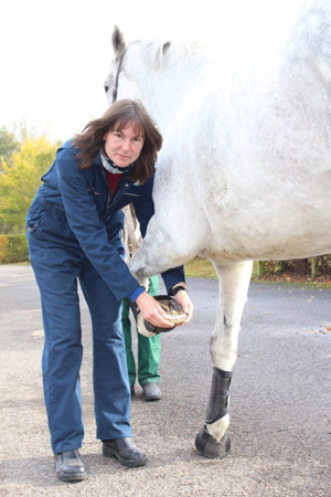 Dr Rachel Murray talked about cardiovascular fitness in the horse.