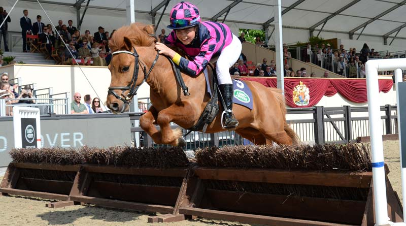 The Shetland Grand National is one of the main crowd-pleasers at the Royal Windsor Horse Show.