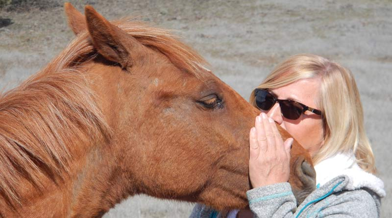Laura Simpson with a wild mare named 'Rosie'... the 'love' is obvious.