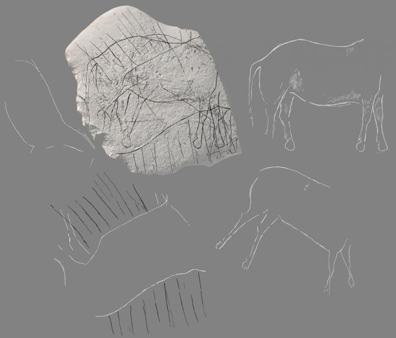 showing the primary depiction of the Equus caballus Horse images cutting into rock said to endure 12,000 years old