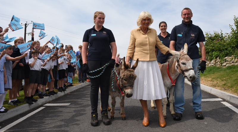 The Duchess of Cornwall meets donkeys William and Harry at The Donkey Sanctuary in Devon.