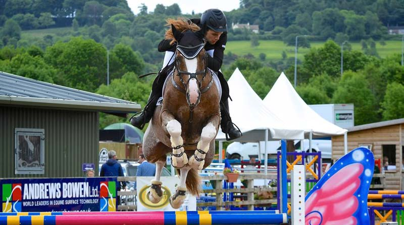 Sport horse vision brings together the