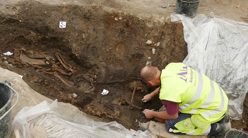 Osteologist Ola Magnell uncovers the skeletons of a horse and a dog.