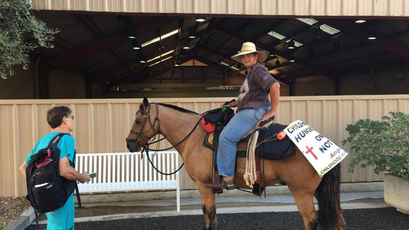 Dr Larry Galuppo and Angela Wood discuss ongoing care for Star-Buck as Wood completes her cross-country journey.