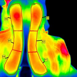 A thermographic image of saddle panels taken immediately after untacking a horse, with the six regions of interest marked. Image: Soroko et al. https://doi.org/10.1371/journal.pone.0221622