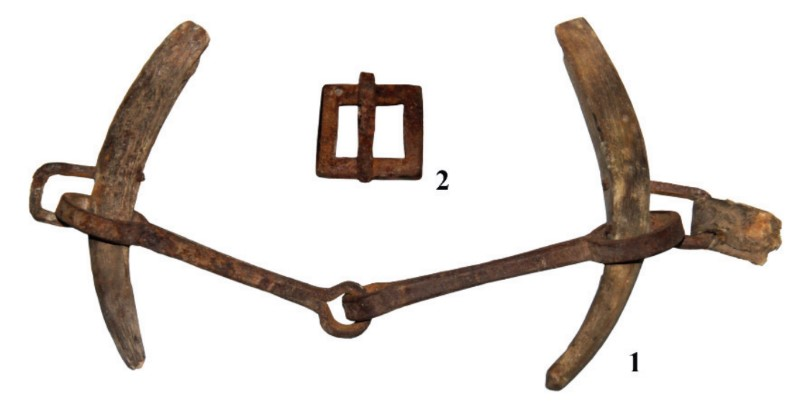 Elements of horse equipment recovered from the burial site. A bit with horn cheekpieces, and a buckle. Photo: N.N. Seregin