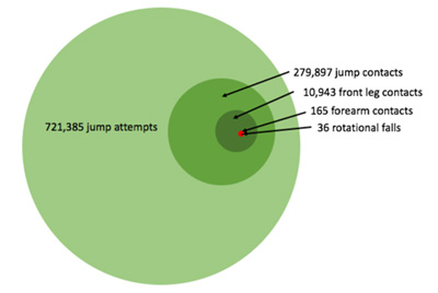 Infographic representation of jump attempts, contacts and rotational falls in a year on FEI courses.
