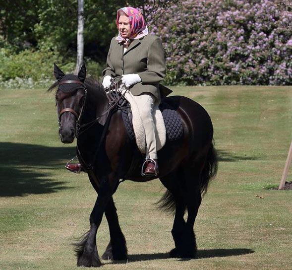 Queen Elizabeth II and Balmoral Fern enjoy an outing on the grounds at Windsor.