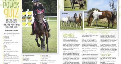"Free magazine: Young Rider ""Mini Digital"" edition"
