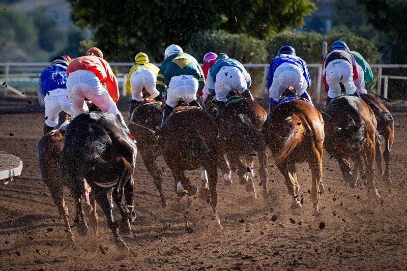 Horseracing Safety and Integrity Act would create a national framework to rein in illicit drug use and create uniform racing safety standards across the country.