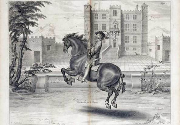 """Applied to haute école training of """"leaping-horses,"""" the rare animals equipped by nature for airs above the ground, Cavendish's premise has clear implications."""
