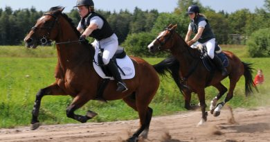 Free webinar: Combating oxidative stress in exercising horses