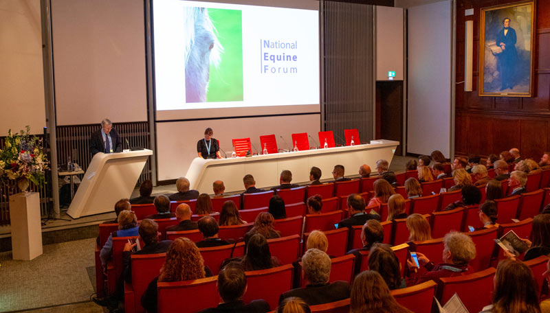 All the sessions from NEF 2020 can be viewed online.