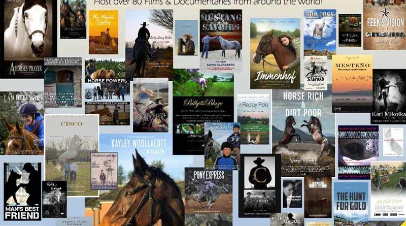 Some of the films featured in last year's Equus Film Festival.