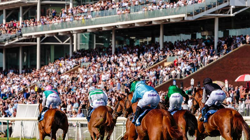 Thoroughbreds in Hong Kong that showed episodes of atrial fibrillation continued to win races, with no effect on the length of their careers or performance, other than compulsory retirement after three bouts.