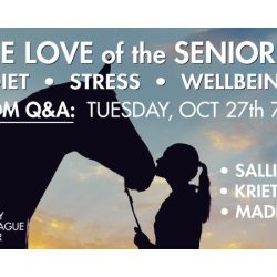 Free webinar, Q&A on senior horse care