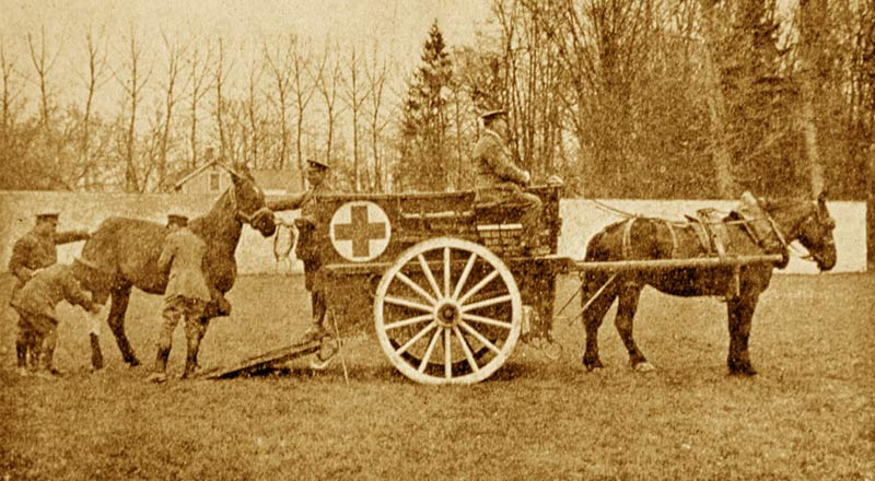 A Blue Cross animal ambulance at work on France.