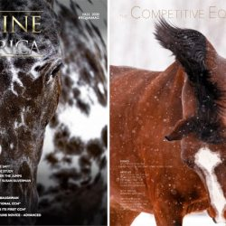 Free magazines showcase the equestrian world