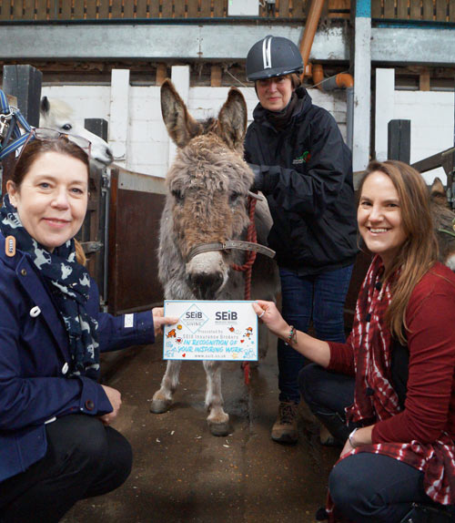 Lynn Cutress, Lucy Bent and Gemma Walpole of Redwings with Apricot the donkey. Redwings was a joint winner of the SEIB Charity Awards 2020.