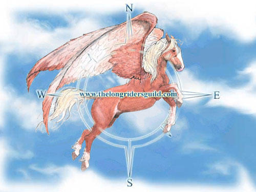 Basha's Cossack stallion, Count Pompeii, is the flying logo on the Long Riders Guild flag.