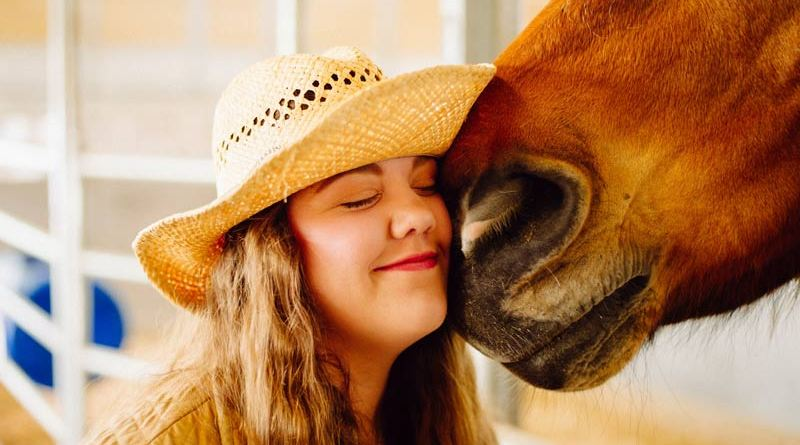 British study explored the human aspect of horse care, looking at how the pandemic affected the wellbeing equestrian stakeholders.
