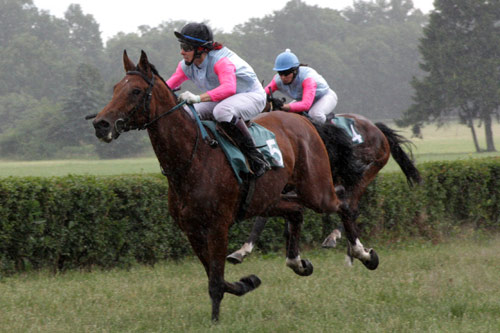 Horses racing at the Partynice track in Poland.
