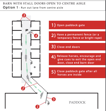 One of the options for an evacuation plan for a barn fire.