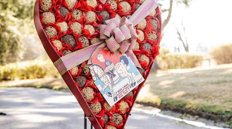 Hallway Feed's Valentine's Day Heart-Shaped Box For Horses